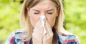 Allergies/Hay-Fever