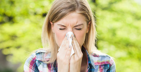 Allergies and Hay-Fever